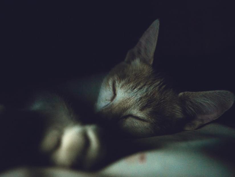 tips-for-healthy-sleep